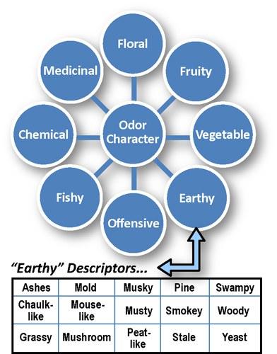 Odor Character Wheel